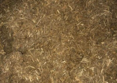 Natural Uncolored Mulch